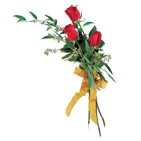 Touch Of Red Roses buy at Florist