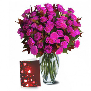 100 Blooms of Hot Lady Valentines Spray Roses