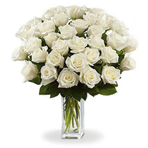 36 Long Stem White Roses buy at Florist