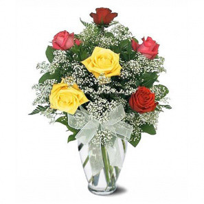 6 Mixed Long Stem Roses buy at Florist