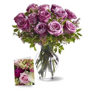 One Dozen Lavender Roses I
