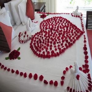 Red Rose Petals buy at Florist