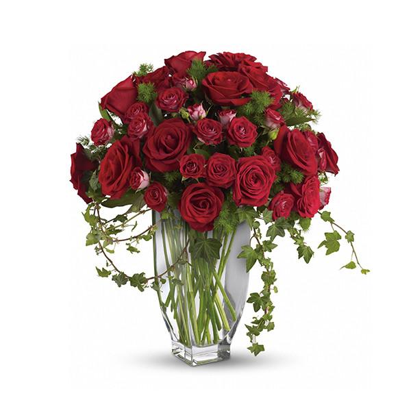 Rose Romanesque buy at Florist