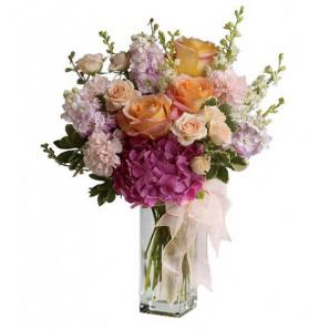 Spring Equinox buy at Florist